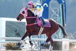 haru urara japan national heroine trier