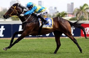 Fort Ember (Lyle Hewitson), strides clear to win the Gr3 Flamboyant Stakes.