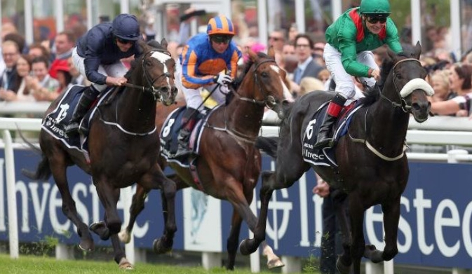 Harzand holds off Coolmore challengers - then Coolmore and Mayfair bought his dam.