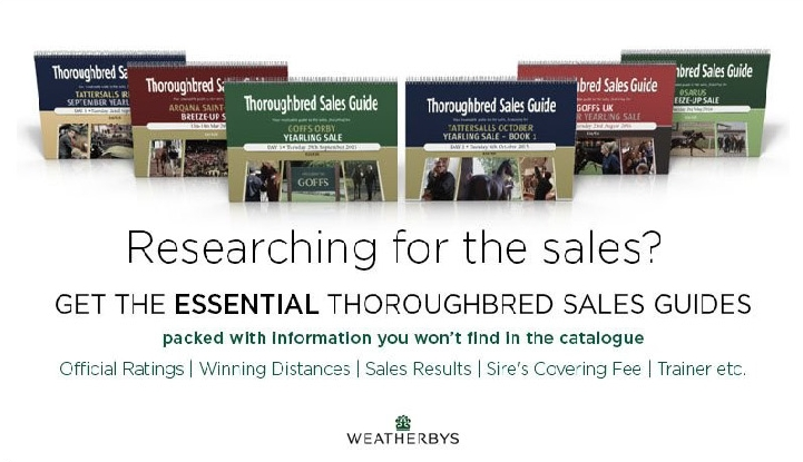 researching for the sales