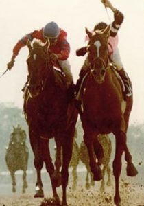 The famous finish between Affirmed and Alydar, Belmont 1978.