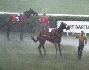 Torrential rain in Doncaster Parade Ring.