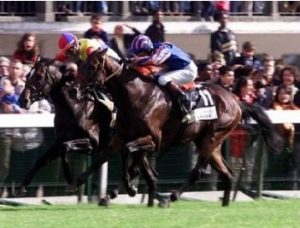 Montjeu (nearest camera), edged out Japan's El Condor Pasa in the 1999 'Arc'.