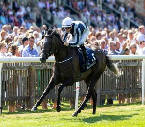 Alpha Centauri clear in the Falmouth for her third Group 1 win.