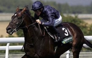 Without the 2.5 miles of the Ascot Gold Cup, the racing public would have been denied the extraordinary Yeats.