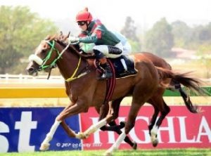 Serendipity wins at Turffontein on Saturday with Striker Strydom up.