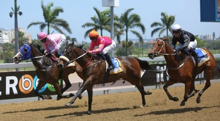 HISTORY was made at Sunday's Greyville meeting when the first official barrier trial was run over the polytrack 1000m prior to the first race. Barrier Trials have been introduced by Gold Circle for all unraced horses and those that have not raced for 120 days or more. (Candiese Marnewick).
