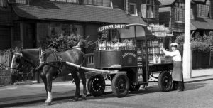 "Everyone knew the ""Express Dairy"" cart that delivered milk to London suburbs."