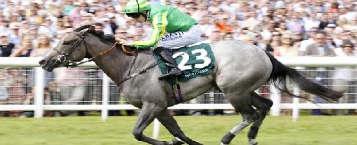 "Mrs Danvers, carrying bottom weight due to her bottom price, beat 22 rivals to pocket £123,000 at Newbury in the Weatherby""s Super Sprint. She went on to win a Listed and a Gr3, at 2 years of age."