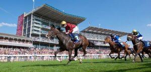 YORK regularly vies with Cheltenham for The Racegoers Club Best in Britain vote.